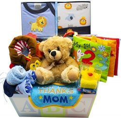 Sweet New Baby Gift Basket | Sweet Baby Boy & Sweet Baby Girl (Blue)