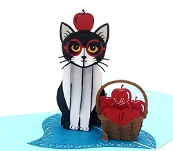 iGifts And Cards Cute Tuxedo Cat 3D Pop Up Greeting Card – Playful, Furry, Lovable, Pussyc ...