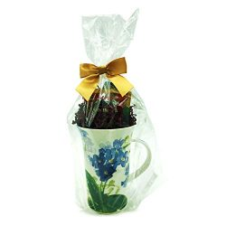 Tea Gift Set Mug, Forget Me Not Design, Walkers Shortbread and Stash Tea – for Women, Moth ...
