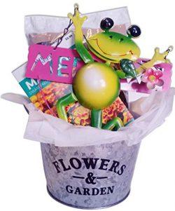 Flower Planter Gift Basket with Galvanized Metal Pot, Soil, Seeds, and Garden Decoration (Plante ...