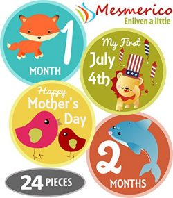 Mesmerico 24 Baby Monthly Holiday Stickers – Baby Boy Girl's First Year Month Age Gr ...