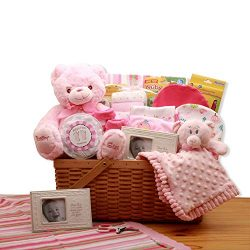 My First Teddy Bear New Baby Gift Basket – Pink