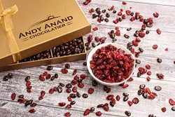 Andy Anand's Chocolate covered California Cranberries 1 lbs, for Birthday, Valentine Day, Gourme ...