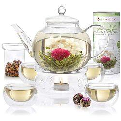 Teabloom Complete Tea Set – Stovetop Safe Glass Teapot with 12 Flowering Teas, Tea Warmer, ...