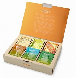 Fathers Day Gift Set BOH Variety Tea Sampler, 6 Flavors, 48 Assorted Tea bags (8 Sachets each Ca ...