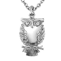 Euone ♛Classic Owl Shape Necklace Cremation Cylinder Filled Ashes Pendant Souvenir Necklace
