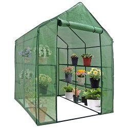 Mini Walk-in Greenhouse Indoor Outdoor -2 Tier 8 Shelves- Portable Plant Gardening Greenhouse (5 ...