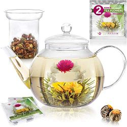 Teabloom Stovetop & Microwave Safe Glass Teapot (34-40oz/1000-1200ml) with Removable Loose T ...