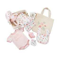 Baby Aspen Fancy Floral 9 Piece Baby Gift Basket