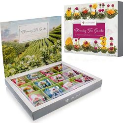 Teabloom Flowering Tea Chest – Finest Quality Blooming Tea Collection From The World' ...