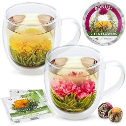 Teabloom Extra-Large (18oz / 550ml) Insulated Double Wall Glass Mugs & Blooming Tea Flowers  ...