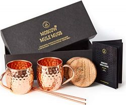 Moscow Mule Copper Mugs Set – 2 Authentic Handcrafted Copper Mugs (16 oz.), 2 Straws, 2 So ...