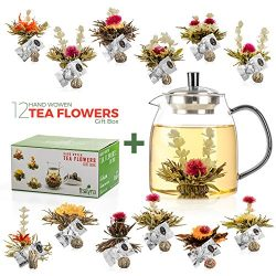 Tealyra – 12 pcs Blooming Tea and 30.5-ounce Glass Teapot Set – 12 Variety Flavors o ...