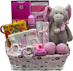 Bundle of Joy Deluxe Baby Girl or Boy Gift Basket (Medium) | 16 Piece New Baby Gift Set (Pink)