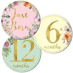 Newborn Baby Girl Gold Floral Milestone Stickers, 1st Year Belly Decals, Set of 12 Monthly Photo ...