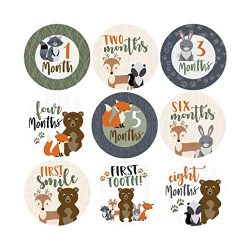 16 Woodland Animals Baby Milestone Stickers, 12 Monthly Photo Picture Props for Boy or Girl Infa ...
