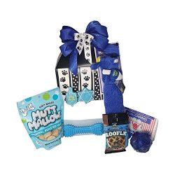 Dog Hanukkah Toys & Treats Gift Basket – Jewish Dog Gifts for Hanukkah