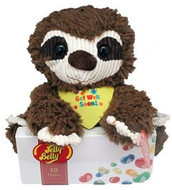 Twisted Anchor Trading Co Get Well Sloth Plush – Get Well Gift Set with Jelly Belly Jelly  ...