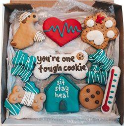 Wüfers Get Well Soon! Handmade Hand-Decorated Dog Treats Cookies Box, 10+ Cookies