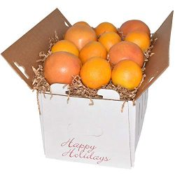 Gourmet Fruit Basket, Mixed Holiday Citrus Box with Oranges and Grapefruit