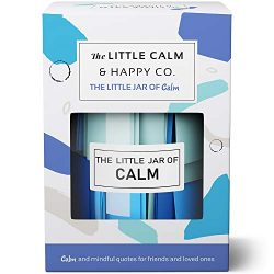 The Little Calm and Happy Company Calm and Mindfulness Positive Quotes Jar (30 Notes) Powerful Q ...