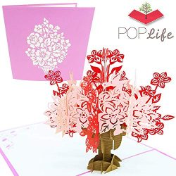 PopLife Flower Basket Pop Up Valentine's Day Card – 3D Anniversary Gift, Pop Up Moth ...