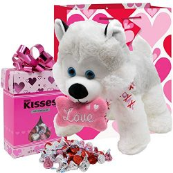 Valentines Day Gift Basket | 12 Inches Stuffed Plush Dog Puppy with Love Squishy Bone Pillow(COL ...