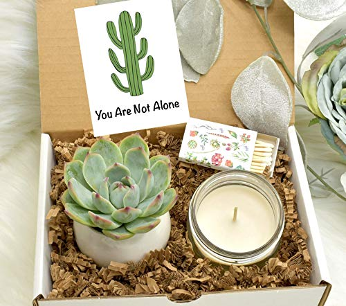 You Are Not Alone – Sympathy gift – Sympathy Candle – Sorry gift box – C ...