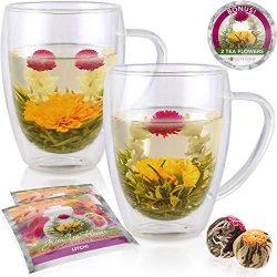 Teabloom Double Walled Glass Mugs & Flowering Tea Gift Set (Set of 2 Mugs + 2 Tea Flowers) & ...